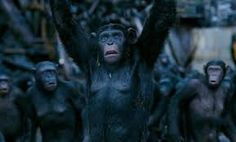 War for the Planet of the Apes Full Movie Eng Sub War for the Planet of the Apes Full Movie Online Youtube War for the Planet of the Apes Full Movie Dailymotion War for the Planet of the Apes () Full Movie Facebook War for the Planet of the Apes Full Movie Vimeo War for the Planet of the Apes Full Movie putlocker War for the Planet of the Apes putlocker War for the Planet of the Apes 4K putlocker War for the Planet of the Apes Full Movie xmovies8