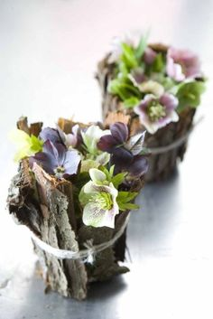 ☆Hellebore blooms and bark bouquet. Love Flowers, My Flower, Spring Flowers, Flower Art, Beautiful Flowers, Wedding Flowers, Rustic Flowers, Winter Flowers, Ikebana