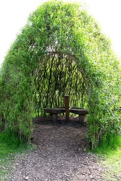 How To Build A Living Willow Playhouse(Diy Garden Arch) Living Willow, Willow House, The Secret Garden, Secret Gardens, Garden Arches, Build A Playhouse, Garden Playhouse, Garden Types, Garden Cottage