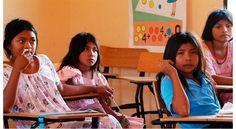 La ONU hizo un llamado a los gobiernos a asegurar un sistema educativo libre de discriminación y sensible a las culturas de los pueblos indígenas que tome en cuenta sus lenguas y su historia.