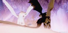 Light fury and toothless king and queen of the hidden world Httyd Dragons, Dreamworks Dragons, Cute Dragons, Dreamworks Animation, Disney And Dreamworks, Disney Animation, Toothless Dragon, Hiccup And Toothless, Dragon Rider