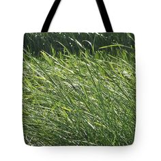 Tropical Tote Bag featuring the photograph Cyperus Tegetiformis. by Nhi Ho Thi Xuan