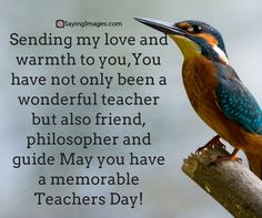 30 Happy Teachers Day Quotes and Messages - teachers day wishes Quotes On Teachers Day, Happy Teachers Day Message, Message For Teacher, Teacher Gifts, Teacher Cards, Teacher Appreciation Quotes, Appreciation Message, Teacher Memes, Teacher Humour