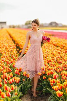 Lace Party Dresses, Plus Dresses, Bridesmaid Dresses, Pink Dress, Lace Dress, Tulip Festival, Tulip Fields, Ever Pretty, Spandex Dress