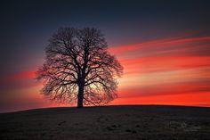 beautiful sky by Anke Kneifel - Photo 146430395 / 500px