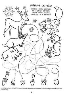ausmalbild oder abpausen für kinder - natur waldtiere  wood animals coloring page for kids