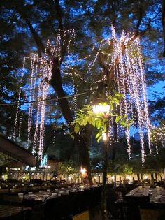 Barbecue Garden Restaurant Reviews, Ho Chi Minh City, Vietnam - TripAdvisor