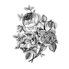 botanical: Floral card. Bouquet of roses, dogrose and anemone. Vintage vector illustration. Classic. Black and white.