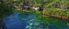 Cenote El Jardin Del Eden- It is  beautiful, not overrun with tourist and affordable to enter. About 18 minutes south of Playa del Carmen.