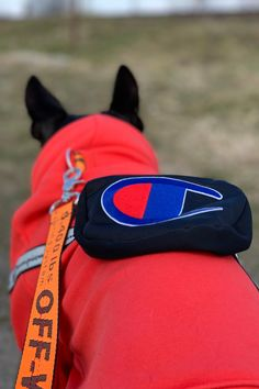 Chowpion Orange Dog Hoodie With Fanny Pack Hypebeast Outfit, Dog Hoodie, Customer Support, Fanny Pack, Supreme, Your Dog, Garage, Hoodies, Stylish