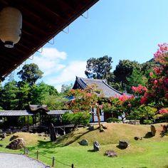 . . 明日も晴れますように🙏🙏 . . .  #高台寺#京都#写真好きな人と繋がりたい#風景#旅#神社仏閣#御朱印#ファインダー越しの私の世界#百日紅#はなまっぷ#そうだ京都行こう#naturelovers#japanesegarden#japan#photo_shorttrip#lovers_nippon#travelgram#icu_japan#landscape#jp_views2nd#ig_nihon#japan_daytime_view#jp_gallery#kyoto#scenery#loves_nippon#ig_japan#team_jp_西###TOMOたび#ポジティブ同盟