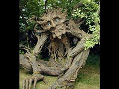 Amazing trees and its byproducts 2016