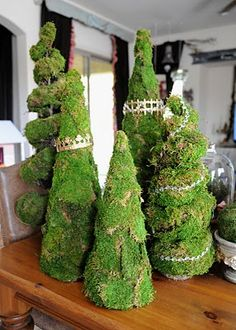 moss covered cones!