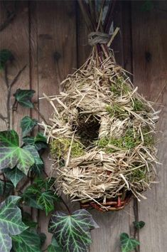 Container Gardening - An Answer To Minimal House For Increasing Vegetation Tuto Pour Tresser Un Nichoir Oiseaux Willow Weaving, Basket Weaving, Bird House Kits, Bird Aviary, Easy Coffee, Shed Homes, Gifts For Photographers, Garden Trellis, Garden Crafts