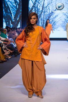 Ishtiaq Afzal, Pakistan Week, 2014