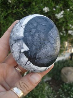 Moon by  MyGardenRocks. Couldn't you find a roundish rock, and re-imagine it into this? Very Pretty!