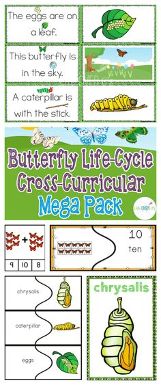 Math, science and ELA Mega pack for teaching the butterfly life-cycle. Number recognition, missing numbers, patterns, butterfly terminology, picture-supported sentences and LOTS more! 96 pages $