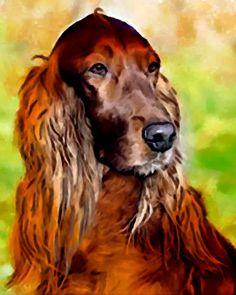 Irish Setter Dog Art 8 x 10 Print Poster of by SwiftArtStudio, $10.00