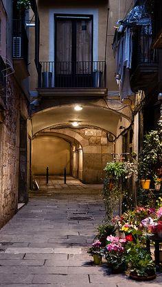 Flores arcos y luces | Barcelona, Catalonia