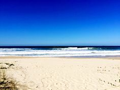 Praia Brava Floripa