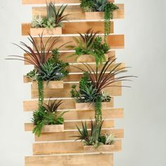 Succulent living wall – D&W Silks - Modern Room With Plants, Plant Shelves, Room Divider Screen, Modern Room Divider, Garden Wall Art, Green Wall Plants, Plant Wall, Plant Decor, Garden Dividers