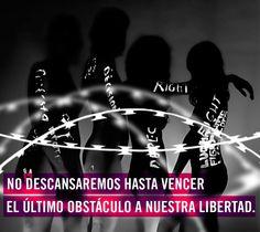 http://www.alzatuvoz.org/misderechos/