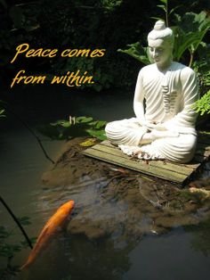 Peace comes from within.