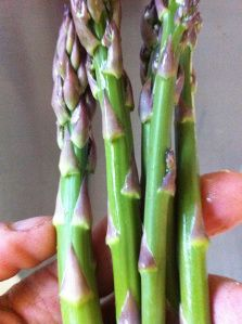Tips for great 2015 asparagus #diybackyardfarm