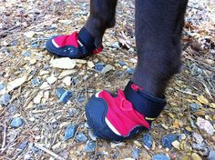 Sometimes even dogs need a little foot protection :-) RuffWear Hiking Boots for Dogs.