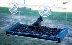 Our window feeder let's you see the prettiest songbirds up close. This is an SE565 model, and we have many more. Order from www.Songbirdstation.com