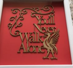 Lazer cut liver bird and writing set in a frame. Lazer Cut, Laser Cutting, Neon Signs, Touch, Writing, Birds, Frame, Picture Frame, Bird