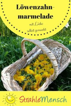 Taraxacum Officinale, Vegan Clean, Grilled Sandwich, Party Buffet, Chutneys, Marmalade, The Ordinary, Healthy Life, Clean Eating