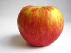 honeycrisp apples: SO good in every way!