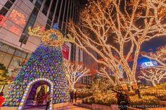 Top 10 Best Christmas Trees Seoul, South Korea