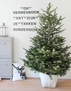 #Wordbanner #tip: Oh dennenboom wat zijn je takken wonderschoon - Buy it at www.vanmariel.nl - € 11,95