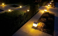 Contemporary landscape lighting ideas for 2019 Desert Landscaping Backyard, Tropical Landscaping, Modern Landscaping, Landscaping Ideas, Plant Lighting, Outdoor Lighting, Contemporary Landscape Lighting, Landscape Stairs, Front Yard Design