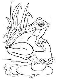 Un canard qui va prendre son bain dans la rivi re dessin colorier coloriages animaux de la - Canard dessin facile ...