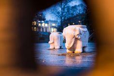Elephants in Klosterenga - Oslo 360 www.oslo360.no