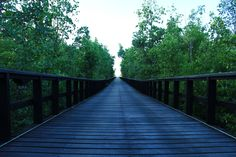 Grand Luley Resort - Manado Green Pathway to the Resort