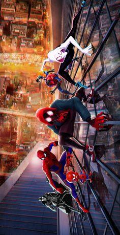 Spider Man into spiderverse