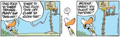 Swamp Cartoon Date: Jun 15, 2014