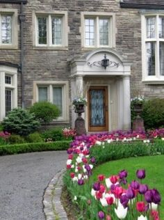Love the tulips for around the drive way. Remember, plant them in layers for 6 weeks of beautiful blooming flowers!