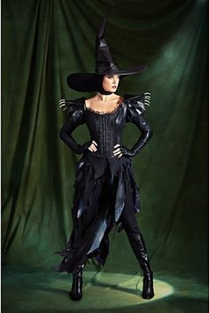 "Limited Edition ""Wicked Witch of the West"" Costume from 'Oz'!"