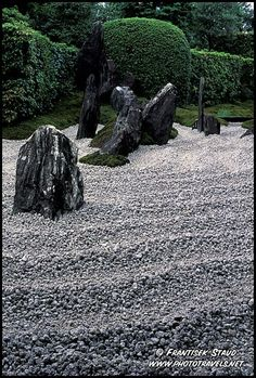 Photograph of Detail of Zen garden in the Zuiho-in Temple, Kyoto, Japan photo