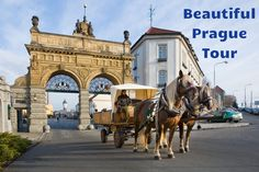 On this private full day tour from Prague to Pilsen you will explore the medieval city center with the largest Synagogue in the Czech Republic and enjoy the visit of world famous Pilsner Urquell Brewery and the beer tasting.Meet your private driver a Prague Hotels, Beer Photos, Prague Czech Republic, Vacation Places, Day Tours, Day Trip, Brewery, European Countries, History