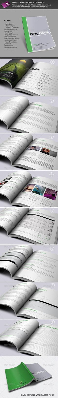 Professional Proposal Template Proposal templates, Project - professional proposal templates