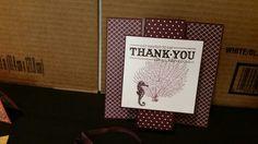 3d shoebox card seahorse thank you