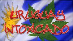 Lamentablemente Uruguay ha decidido cambiar de paradigma. De ser y parecer la Suiza latinoamericana ahora se encamina para emular a Jamaica ...