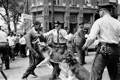 AP PHOTOS: A history of civil disobedience in America - SFGate  ||  Close Image 1 of 14 FILE - In this May 3, 1963 file photo, a 17-year-old civil rights demonstrator, defying an anti-parade ordinance of Birmingham, Ala., is attacked by a police dog. On the afternoon of May 4, 1963, during a meeting at the White House with members of a political group, President Kennedy discussed this photo, which had…