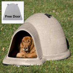 Indigo Dog House With FREE Dog Door Deal Of The Day U003eu003eu003e Http: